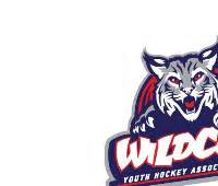 Tucson adult hockey league unknown 200x170